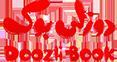 کد تخفیف دوزلی بوک